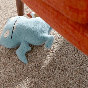 carpet-faqs
