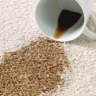 carpet_maintenace